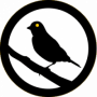 admin:services:canary-logo.png